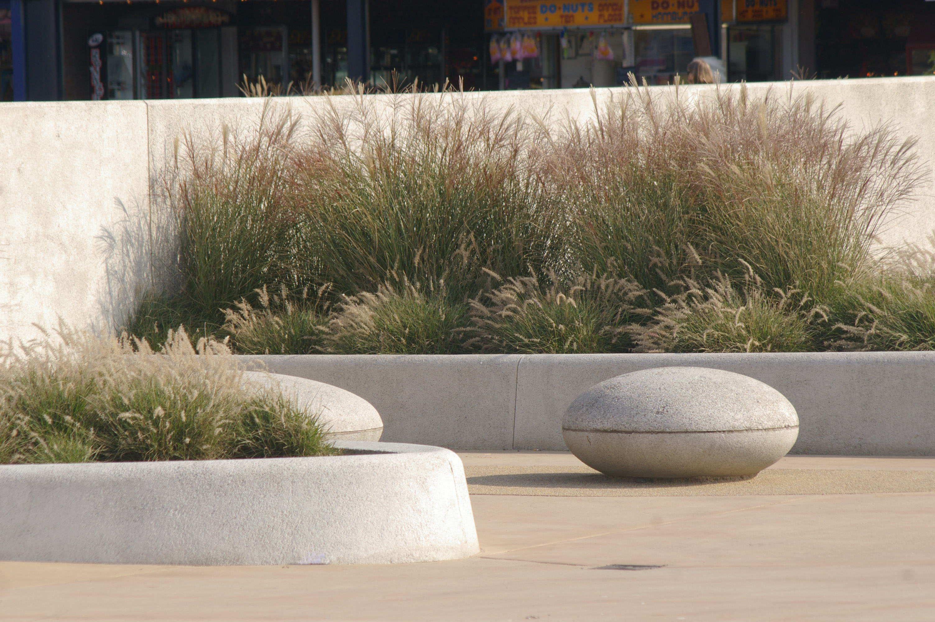 Drift Park Photo 6 - Grasses and Seats (BCAL)
